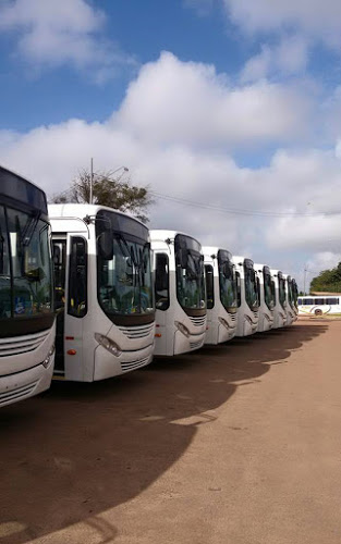 Registro feito antes da plotagem na nova frota de ônibus que circulará em São Luís, sob administração do Estado