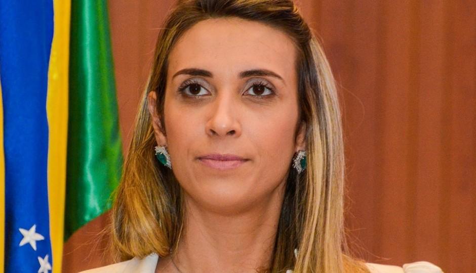 Andrea cobra apreciação de PEC e defende mais liberdade na atuação parlamentar
