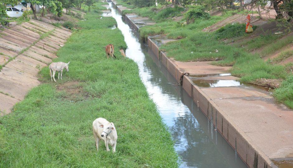 Maranhão segue entre os piores do país em saneamento básico